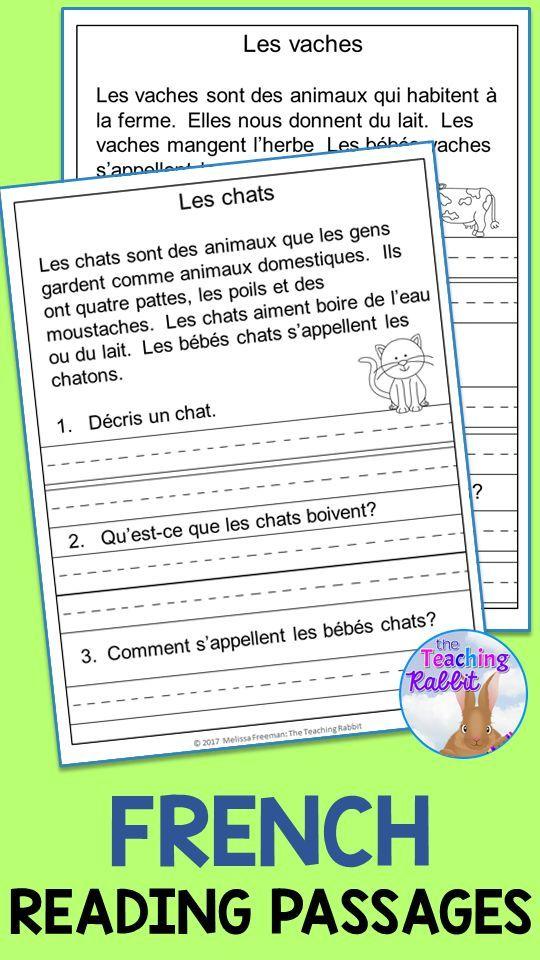 French Reading Comprehension Passages Comprehension De La Lecture