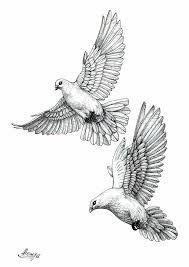 Bildergebnis Fur Vogel Tattoo Vorlage Tauben