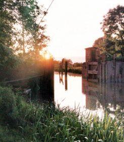 Wilsterau , ist ein Nebenfluss der Eibe.  Im südlichen Schleswig-Holstein, zwischen einem Nebenfluß der Eibe und dem Nord-Ostsee-Kanal verläuft die Wilsterau. Das besondere an diesem Fluß: Er ist nicht nur sehr fischreich, sondern ändert auch noch mehrmals am Tag seine Fließrichtung.  http://www.angelstunde.de/die-wilsterau/