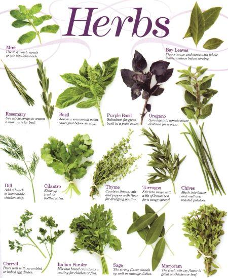 Kitchen Herb Gardens That Will Make Cooking Wonderful: Build A Raised Herb Garden Sanctuary