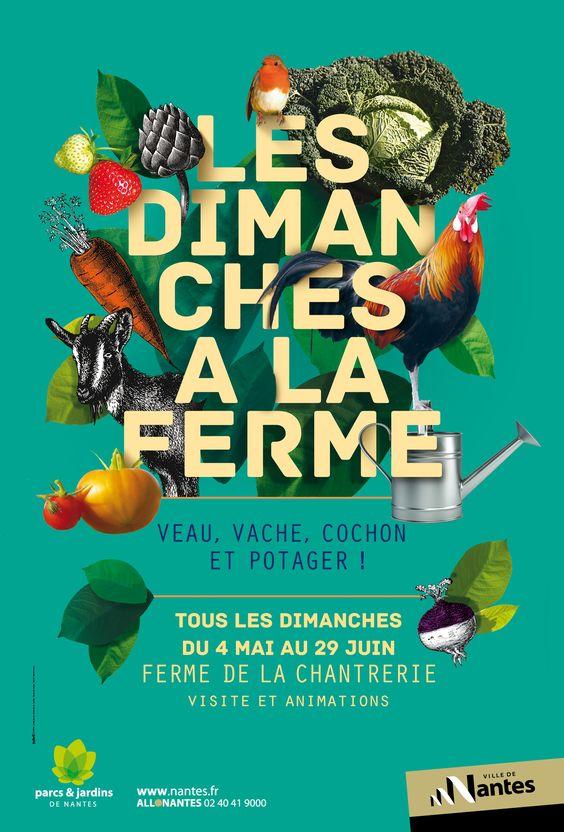 MOSWO   le public   Ville de Nantes   SEVE   com publique   campagne   2014   tourisme   nature   jardin des plantes   parc
