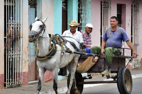 """Cuban descriptors for various types of people; for example, a """"cañón"""" is someone good-looking and a """"puro(a)"""" is an old person . Varios apodos emplea el cubano en la vida diaria para identificar a personas de diferente tipo. Solo los nacidos en la Patria conocen el significado."""