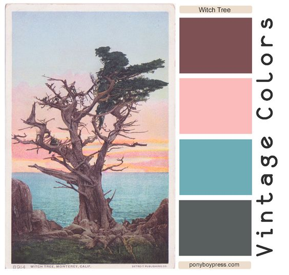 Vintage Color Palette - The Witch Tree - get hex color codes on the blog…