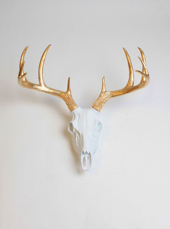 The Deer Skull, our white resin deer skull w/gold, is custom painted white w/gold antlers and can match any style of hanging wall home decor.