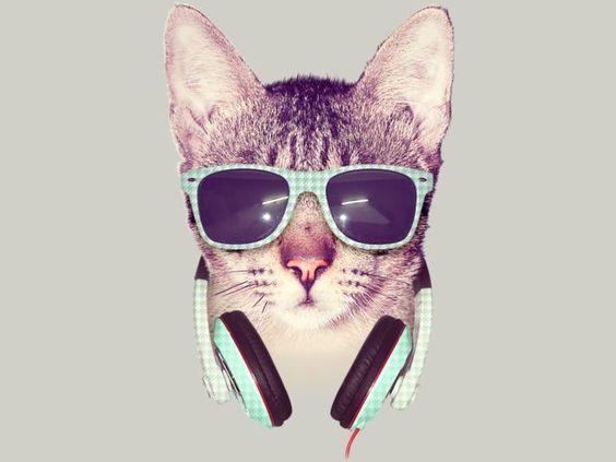 COOL CAT Shirt By Dzeri29