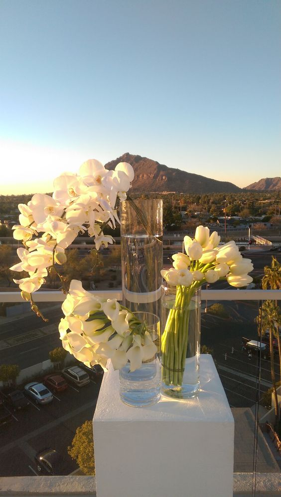 Roof Top Wedding at Valley Ho