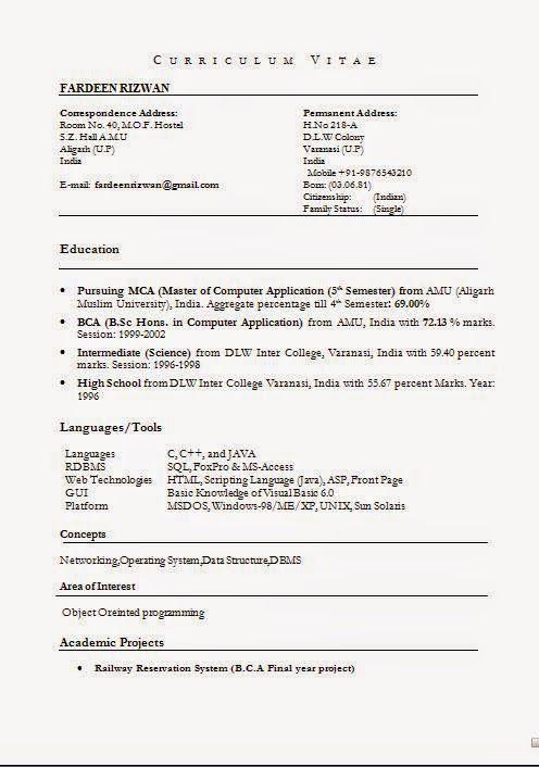format of resume in pdf Sample Template Example ofExcellent CV - vb sql programmer sample resume