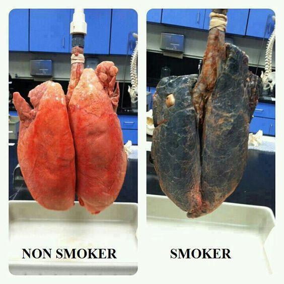 Don't smoke please