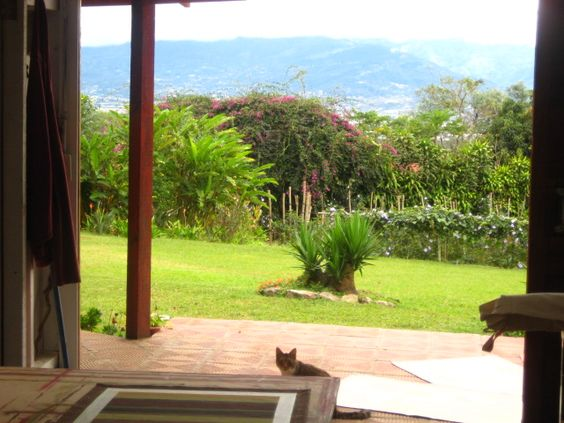 The view from Laurels Originals Art Studio Santa Barbara de Heredia, Costa Rica