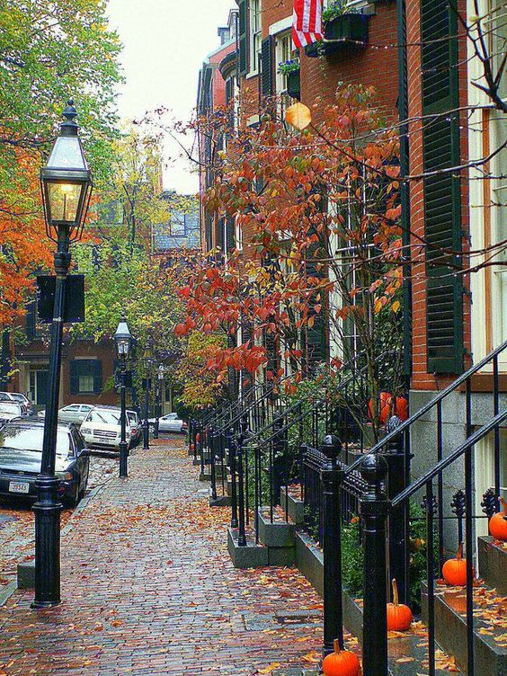 The Daily Catch North End, Boston, Massachusetts. I miss living here :( loved Boston in the fall and winter :)
