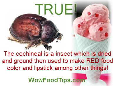 Natural foods are not BRIGHT RED! Crushing bugs for the color made ...