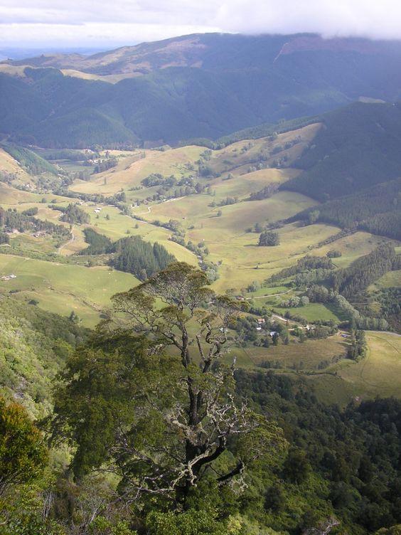Roadtrip Neuseeland Takaka Hill