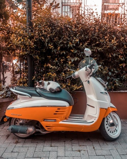 Check Out This 2016 Vespa Primavera 50 Listing In Mansfield Oh