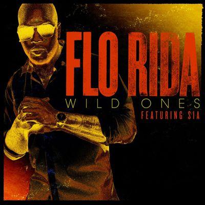 Flo Rida, Sia – Wild Ones acapella