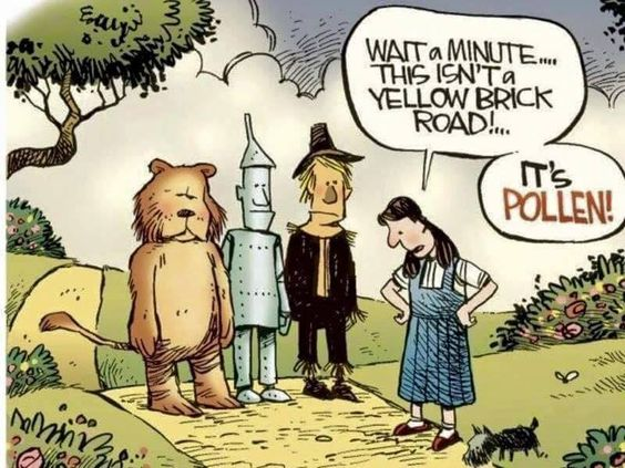 yep!! #pollen