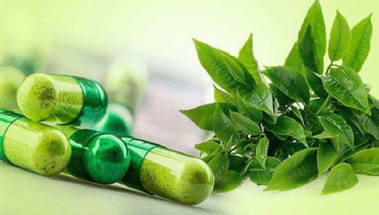 قوی ترین آنتی بیوتیک طبیعی برای پاکسازی بدن از عفونت