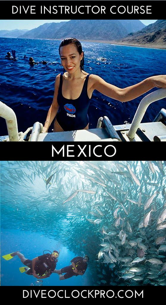 Padi Dive Instructor Course Cozumel Mexico Click For Details Www Diveoclock Com Pro Padi Dive Cozumel Scuba Diving Courses Cozumel Mexico