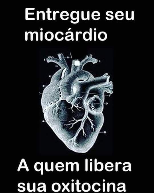 Heart Ocitocina Coração Amor Apaixonar Paixao