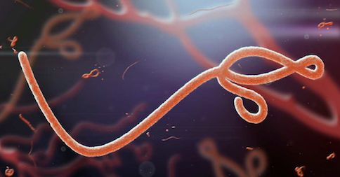 If your fears are causing you to get anxious about Ebola, check out this article / video