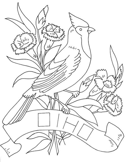 Love To Sew Bird Coloring Pages State Birds Ohio State Bird