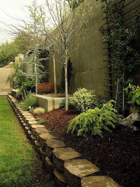 side yards yards and apple tree on pinterest