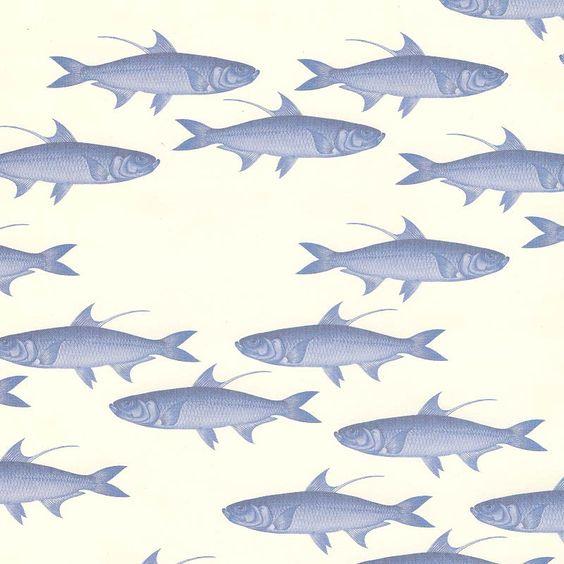 Caskata Artisanal Paper - Blue Fish