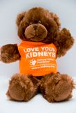 """This cute and cuddly 8"""" teddy bear, dressed in an orange Love Your Kidneys shirt, is the perfect gift for kids of all ages."""