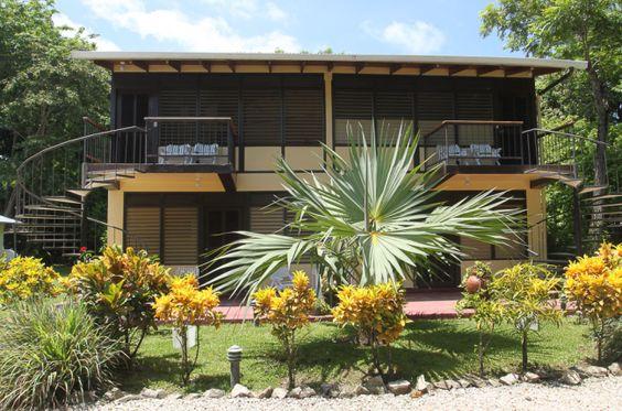 gilded iguana nonACrooms  - Costa Rica: