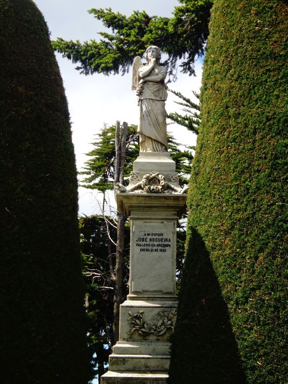 cementerio sara braun, punta arenas, region magallanes, chile, patagonia.