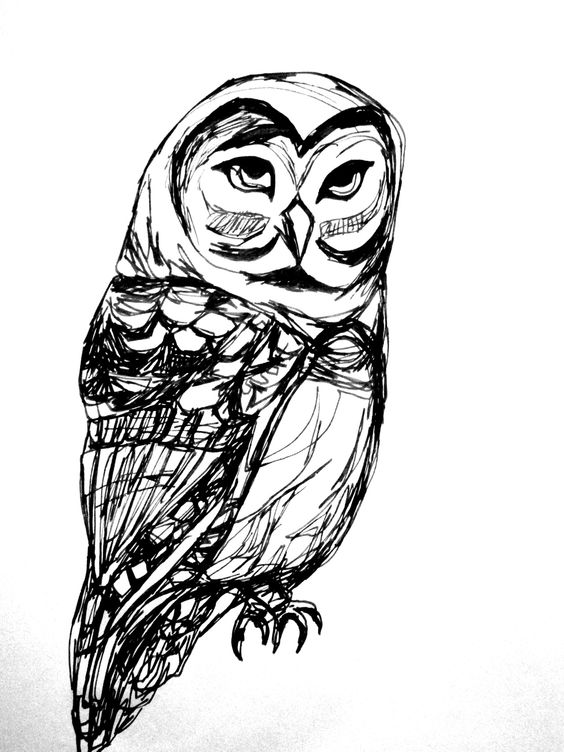 Drawn by the coolest former professor ever! Drawing by ARTjaden: Gr8 Design, Art Inspiration, Tattoo Inspiration, Owl, Drawing