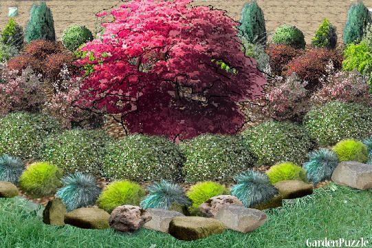 Projekt Ogrodu Rabata W Pelnym Sloncu Wiosna Plants Projects