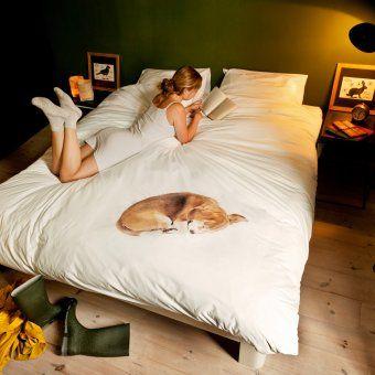 #design3000 Bob – was für ein schöner Hund! Und gut erzogen ist er: Morgens werden Herrchen oder Frauchen garantiert nicht zum Gassigehen geweckt!