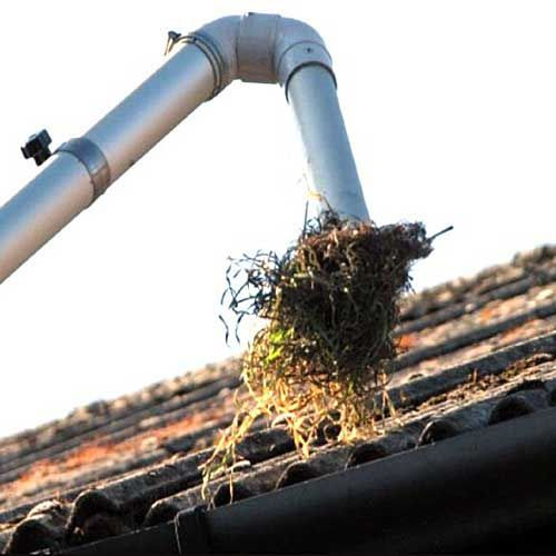 Gutter Cleaning Cleaning Gutters Professional Cleaning Services Cleaning Service