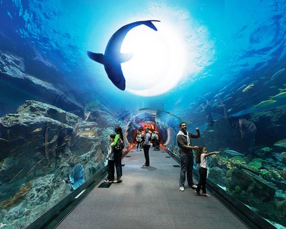 Guia de Viagem: Turismo em Dubai | Viagem Mundo