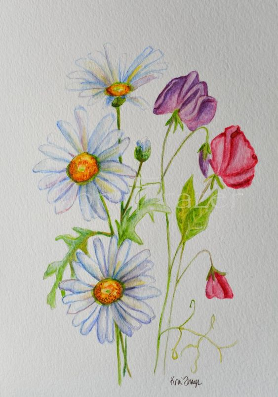 April Birthday Flower Daisy And Sweet Pea Flowers Original Etsy Watercolor Tattoo Flower Birth Flower Tattoos April Birth Flower