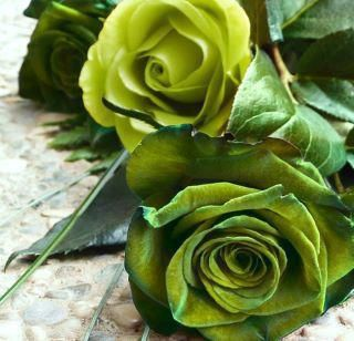 A rose by any other name remains a rose by kimberly