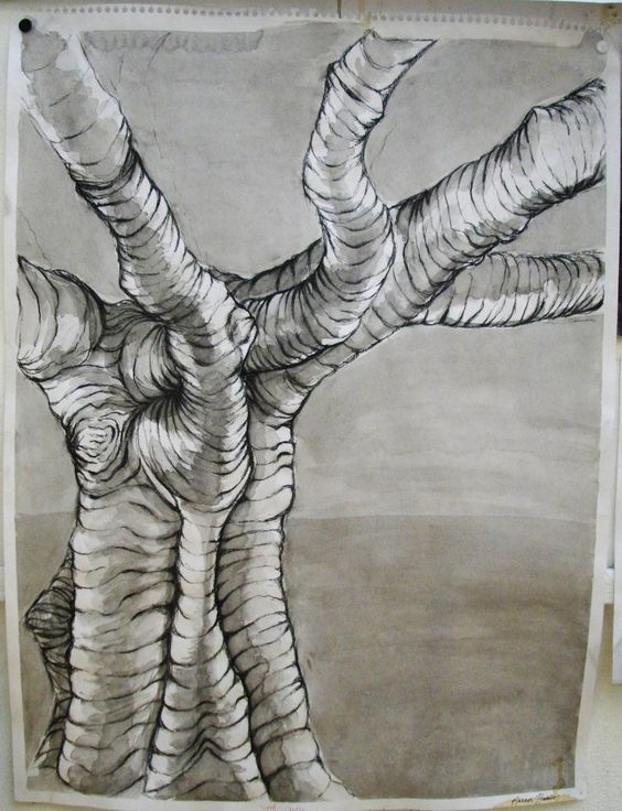 History Of Contour Line Drawing : Cross contour tree by kat the storkin on deviantart