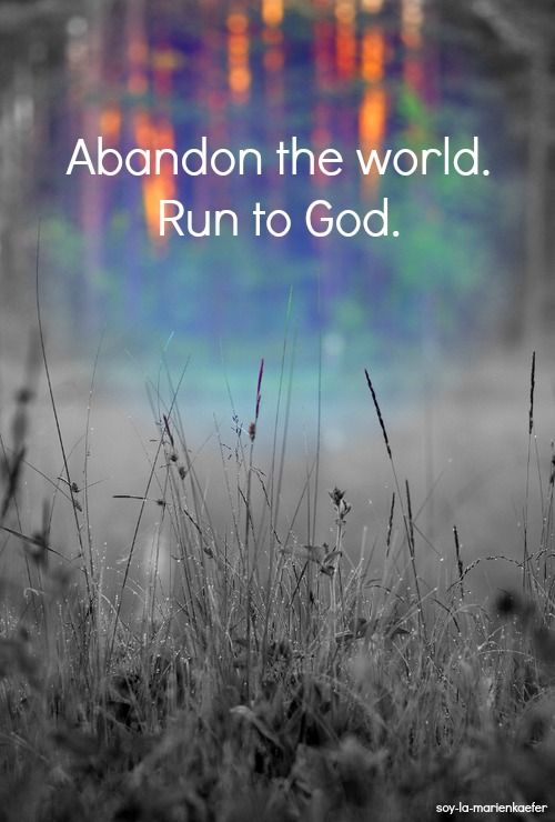 Abandon the world. Run to God. ~ Soy-La-Marienkaefer @ Tumblr ✝: