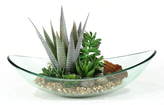 Mixed Aloe and Succulents Desk Top Plant in Bowl