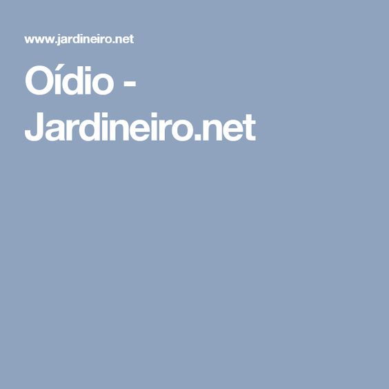 Oídio - Jardineiro.net