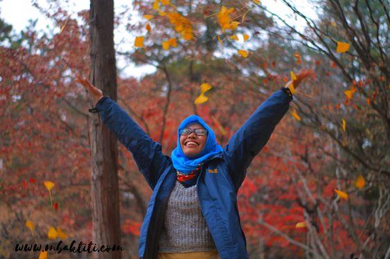 Backpacker Jepang Korea 2 Minggu, Kemana Aja? 9