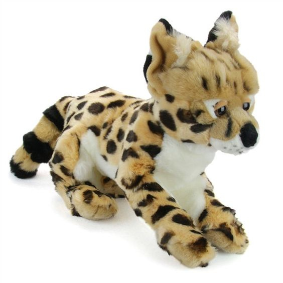 You will not find these cute little serval kittens many other places.  Get yours today! Approximately 8""