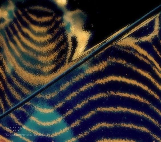 #Popular on #500px waves and swirl by SuzanneGascon #abstract #art #image #Photo #photography https://t.co/ywBABvKGDz #followme #photography
