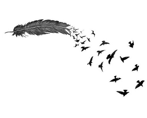 Tumblr Backgrounds Black And White Birds | Latest Laptop ...