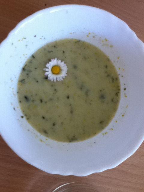 Gänseblümchensuppe :-)