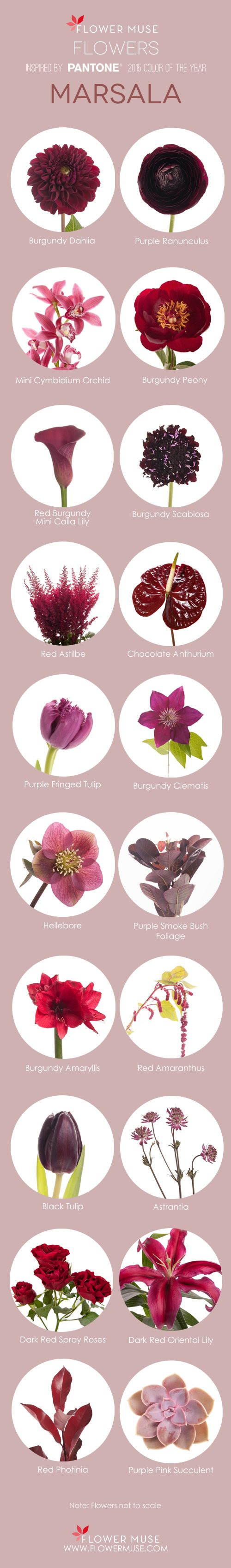 2015 Color of The Year Marsala Flower Inspiration - on Flower Muse Blog: http://www.flowermuse.com/blog/marsala-flowers/
