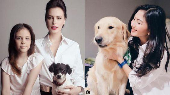 Hewan Peliharaan Artis - Hebat, Anjing Peliharaan Seleb Ini Sadar Kamera