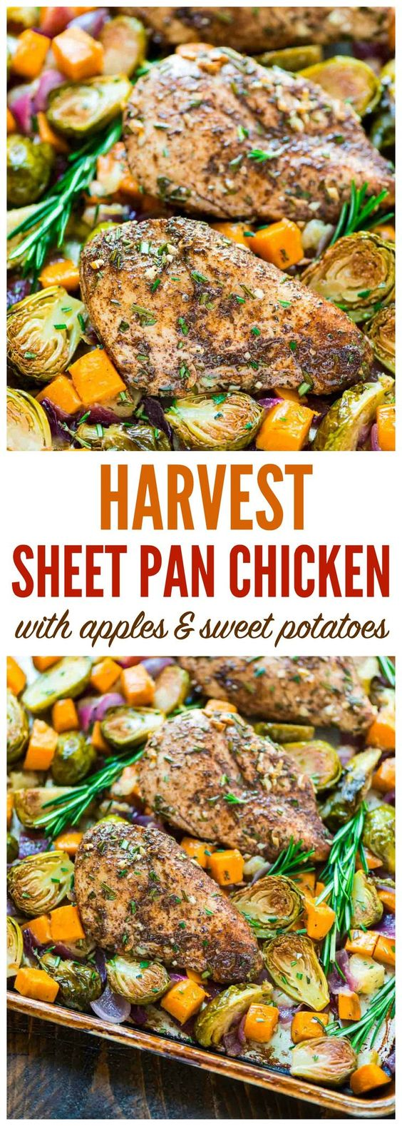 ONE PAN Paleo Harvest Chicken Dinner with Apples, Sweet Potatoes, and Brussels Sprouts Recipe via Well Plated by Erin - Easy and healthy sheet pan recipe that's perfect for busy weeknights! {paleo, whole 30, gluten free, dairy free} #sheetpansuppers #sheetpanrecipes #sheetpandinners #onepanmeals #healthyrecipes #mealprep #easyrecipes #healthydinners #healthysuppers #healthylunches #simplefamilymeals #simplefamilyrecipes #simplerecipes
