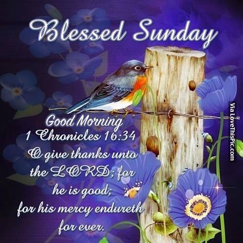 Good Morning Sunday Morning : Blessed sunday good morning quotes