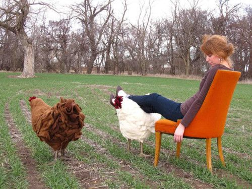 Chicken footstool - Thecitygirlfarm - Maybe I could have this until I get some real chickens?: